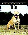 Essential Pit Bull