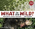 What in the Wild? Cover