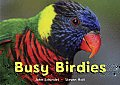 Busy Birdies (Busy Book)