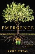 Emergence The End of Self Improvement