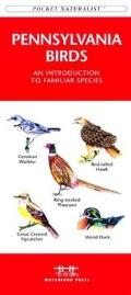 New York City Birds: A Folding Pocket Guide to Familiar Species in the Metropolitan Area