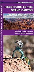 Field Guide to the Grand Canyon: A Folding Pocket Guide to Familiar Plants and Animals