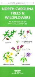Northwestern Seashore Life (Pocket Naturalist)