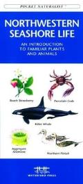 Rocky Mountain Trees & Wildflowers (Pocket Naturalist)