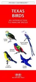 Washington State Birds Pocket Naturalist