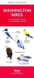Washington Trees & Wildflowers (Pocket Naturalist)