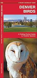 Denver Birds: An Introduction to Familiar Species