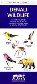 Nevada Birds: A Folding Pocket Guide to Familiar Species