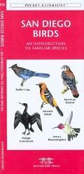 San Francisco Birds: An Introduction to Familiar Species