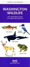 Wisconsin Birds: A Folding Pocket Guide to Familiar Species