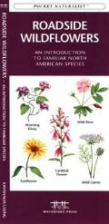 Reptiles & Amphibians: An Introduction to Familiar North American Species