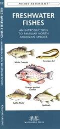 Arkansas Birds: A Folding Pocket Guide to Familiar Species