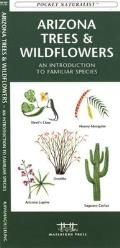 Birds of Prey: An Introduction to Familiar North American Species (Pocket Naturalist) Cover