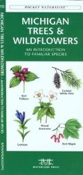 Minnesota Trees & Wildflowers: An Introduction to Familiar Species (Pocket Naturalist)