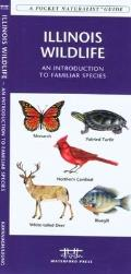 New York State Trees & Wildflowers: An Introduction to Familiar Species