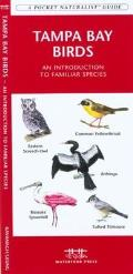 Tampa Bay Wildlife: An Introduction to Familiar Plants and Animals (Pocket Naturalist)