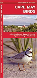 Cape May Birds: An Introduction to Familiar Species in Cape May County (Pocket Naturalist) Cover