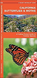 California Butterflies & Moths: An Introduction to Familiar Species