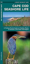 Cape Cod Seashore Life: An Introduction to Familiar Plants & Animals in the Cape Cod Region (Pocket Naturalist)