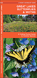 Great Lakes Butterflies & Moths: An Introduction to Familiar Species (Pocket Naturalist)