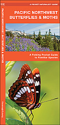 Pacific Northwest Butterflies & Moths: An Introduction to Familiar Species (Pocket Naturalist)
