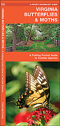 Virginia Butterflies & Moths: An Introduction to Familiar Species (Pocket Naturalist)