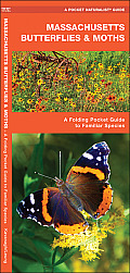 Massachusetts Butterflies & Moths: An Introduction to Familiar Species (Pocket Naturalist)