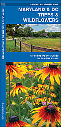 Maryland & DC Trees & Wildflowers: A Folding Pocket Guide to Familiar Species