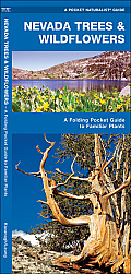 Nevada Trees & Wildflowers: An Introduction to Familiar Species