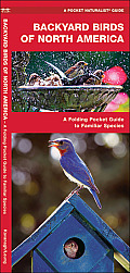 Backyard Birds of North America An Introduction to Familiar Species