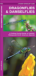 Dragonflies & Damselflies: An Introduction to Familiar North America Species (North American Nature Guides)