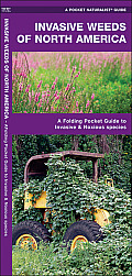 Invasive Weeds of North America: An Introduction to Over 60 Problematic Widespread Species (North American Nature Guides)