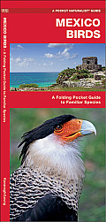 Mexico Birds: An Introduction to Over 140 Familiar Species (International Nature Guides)