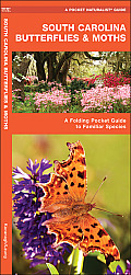 South Carolina Butterflies & Moths: An Introduction to Familiar Species
