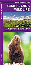 Grasslands Wildlife: An Introduction to Familiar Species Found in Prairie Grasslands (Pocket Naturalist)
