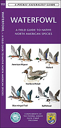 Waterfowl: A Field Guide to Native North American Species (Pocket Naturalist Guides)