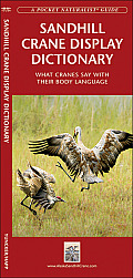Sandhill Crane Display Dictionary: What Cranes Say with Their Body Language (Pocket Naturalist Guide)