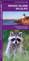 Rhode Island Wildlife: A Folding Pocket Guide to Familiar Species