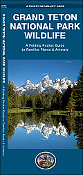 Grand Teton National Park Wildlife: An Introduction to Familiar Species (Pocket Naturalist Guides)