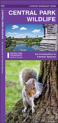 Central Park Wildlife: An Introduction to Familiar Species (Pocket Naturalist Guide)