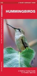 Hummingbirds: A Folding Pocket Guide to North American Species (Pocket Naturalist Guides)