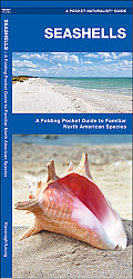 Seashells: A Folding Pocket Guide to Familiar North American Species (Pocket Naturalist Guides)