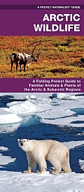 Arctic Wildlife: An Folding Pocket Guide to Familiar Animals & Plants of the Arctic & Subarctic Regions (Pocket Naturalist Guides)