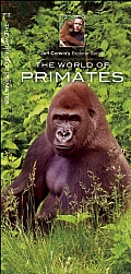 The World of Primates (Jeff Corwin's Explorer)