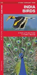India Birds A Folding Pocket Guide to Familiar Species