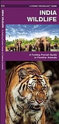 India Wildlife: A Folding Pocket Guide to Familiar Animals
