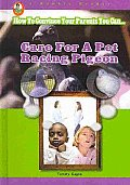 Care for a Pet Racing Pigeon