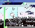 Saguaro Moon A Desert Journal