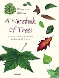 Notebook of Trees A Guide to Identifying & Gathering 35 Leaves