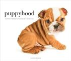 Puppyhood: Life-Size Portraits of Puppies at 6 Weeks Old Cover